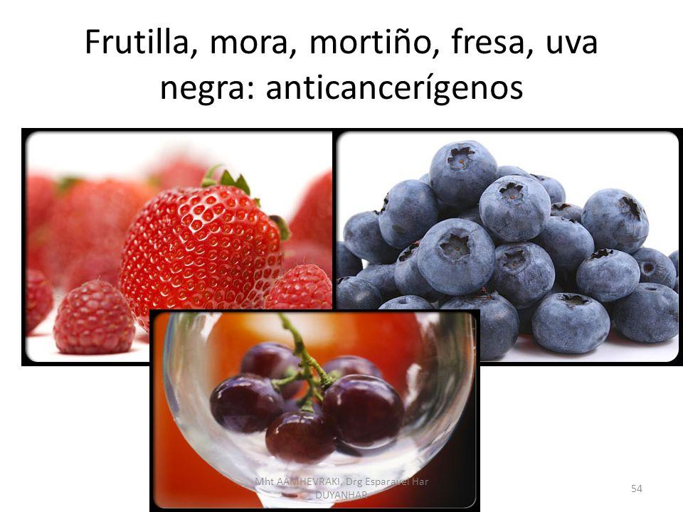 Frutilla, mora, mortiño, fresa, uva negra: anticancerígenos 54 Mht AAMHEVRAKI, Drg Esparavel Har DUYANHAR