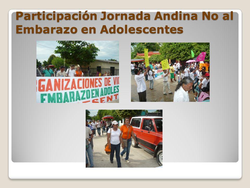 Participación Jornada Andina No al Embarazo en Adolescentes