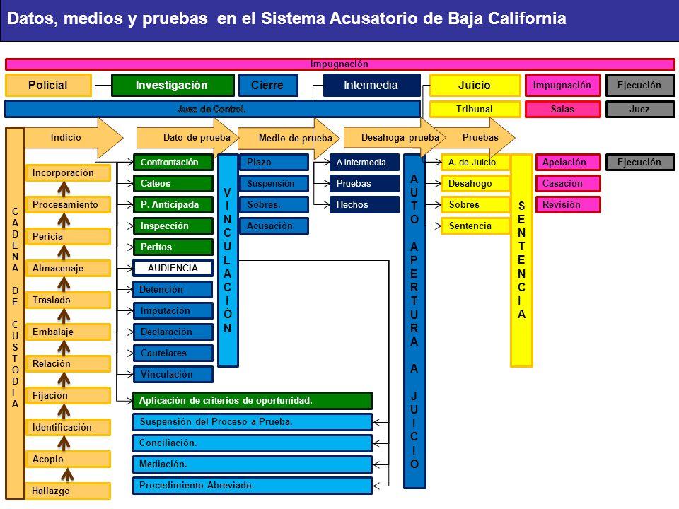 Medio de prueba Dato de prueba PolicialInvestigaciónCierreIntermediaJuicio ImpugnaciónEjecución TribunalSalasJuez Confrontación Plazo A.IntermediaA.