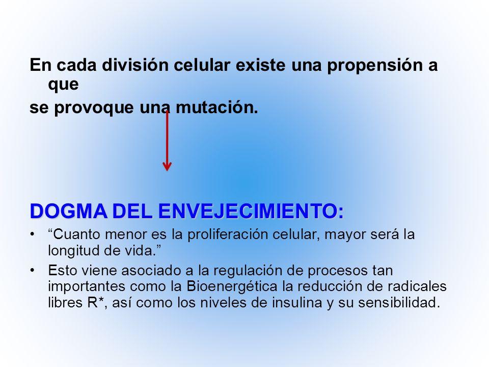 En cada división celular existe una propensión a que se provoque una mutación. DOGMA DEL ENVEJECIMIENTO: Cuanto menor es la proliferación celular, may