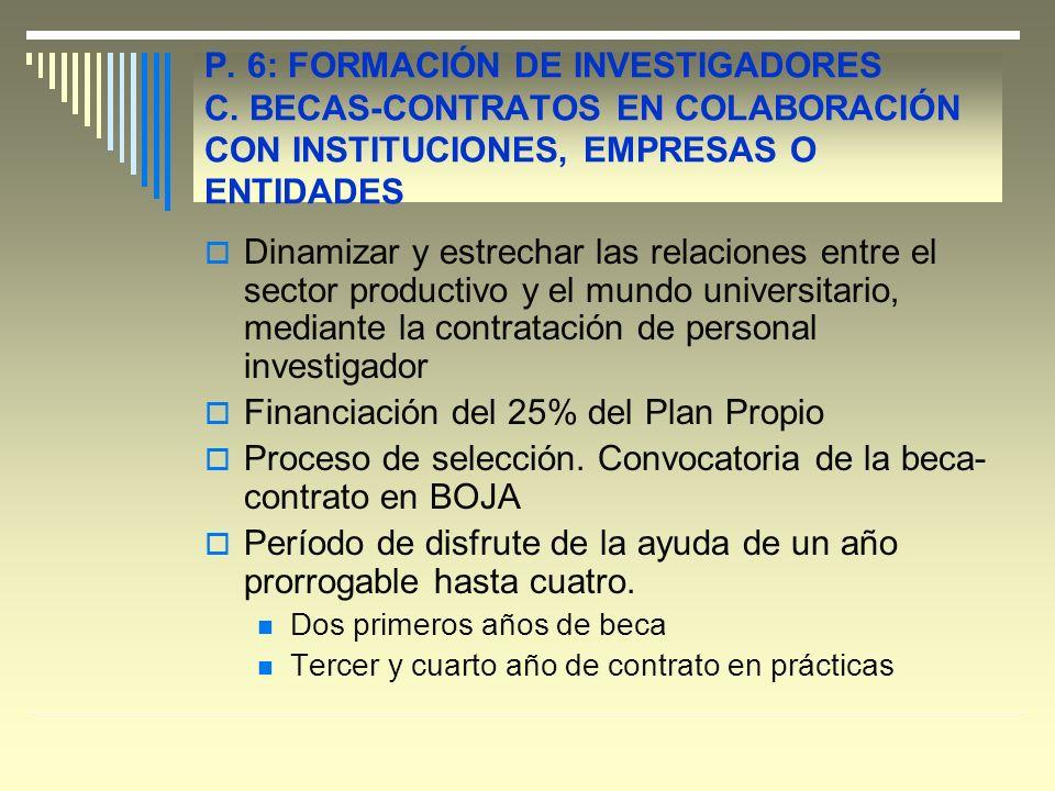 P. 6: FORMACIÓN DE INVESTIGADORES C.