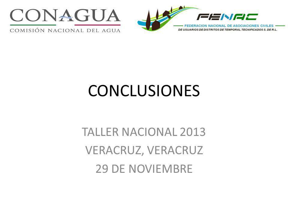 CONCLUSIONES TALLER NACIONAL 2013 VERACRUZ, VERACRUZ 29 DE NOVIEMBRE
