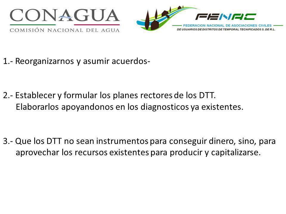 1.- Reorganizarnos y asumir acuerdos- 2.- Establecer y formular los planes rectores de los DTT.