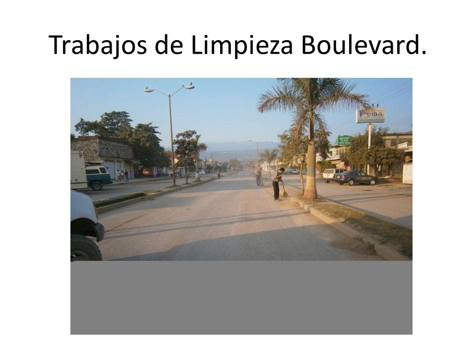 Trabajos de Limpieza Boulevard.