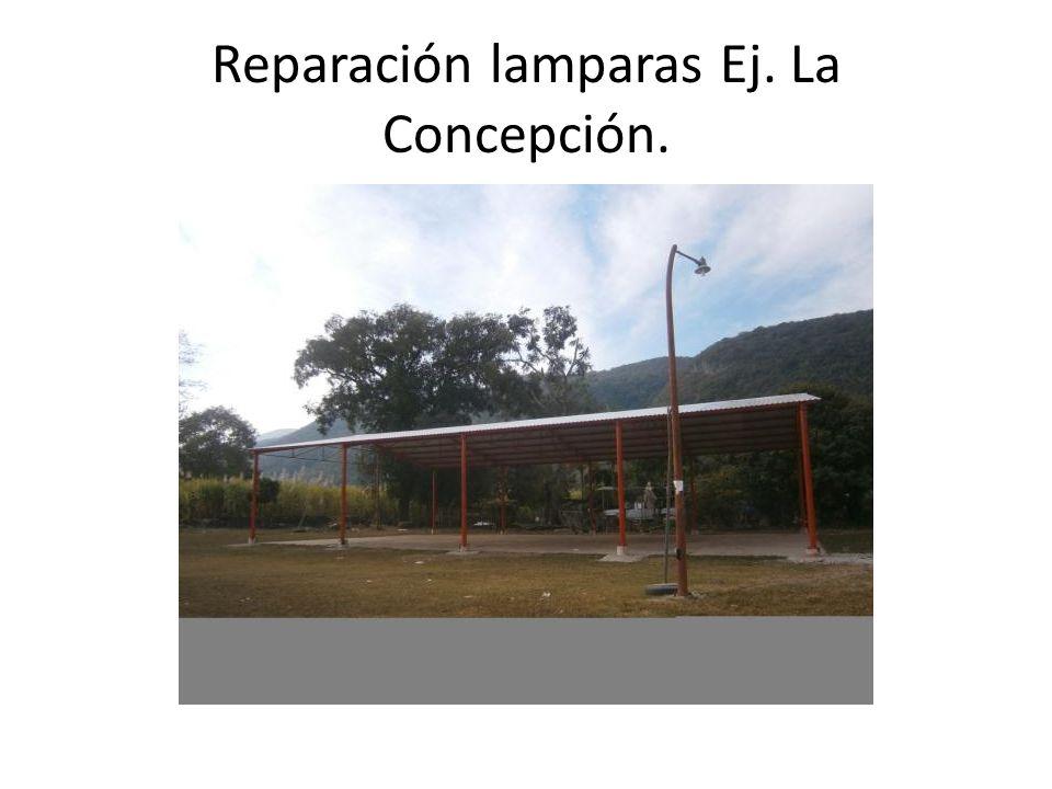 Reparación lamparas Ej. La Concepción.