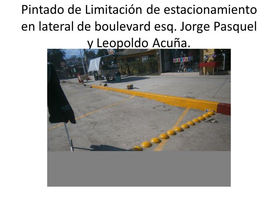 Pintado de Limitación de estacionamiento en lateral de boulevard esq. Jorge Pasquel y Leopoldo Acuña.