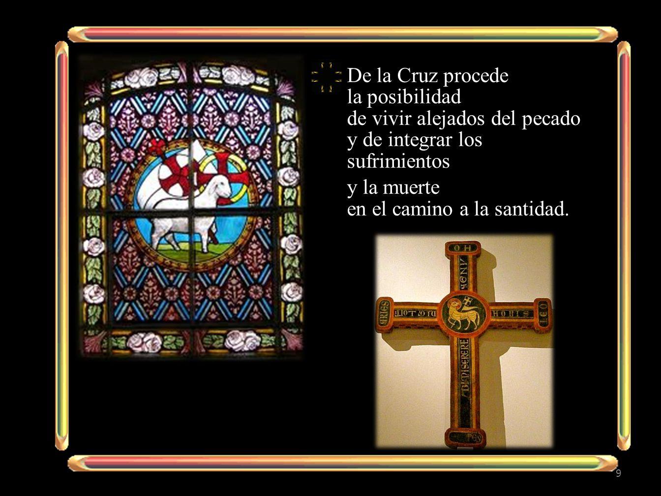 De la Cruz procede la posibilidad de vivir alejados del pecado y de integrar los sufrimientos y la muerte en el camino a la santidad. 9