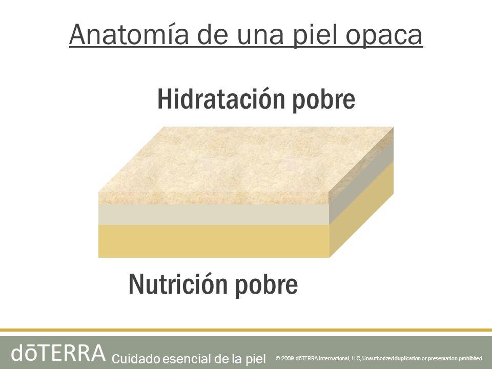 © 2009 dōTERRA International, LLC, Unauthorized duplication or presentation prohibited. Anatomía de una piel opaca Nutrición pobre Hidratación pobre C