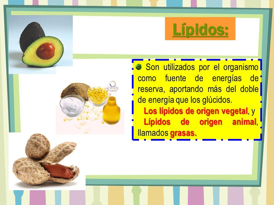 Son utilizados por el organismo como fuente de energías de reserva, aportando más del doble de energía que los glúcidos. Los lípidos de origen vegetal