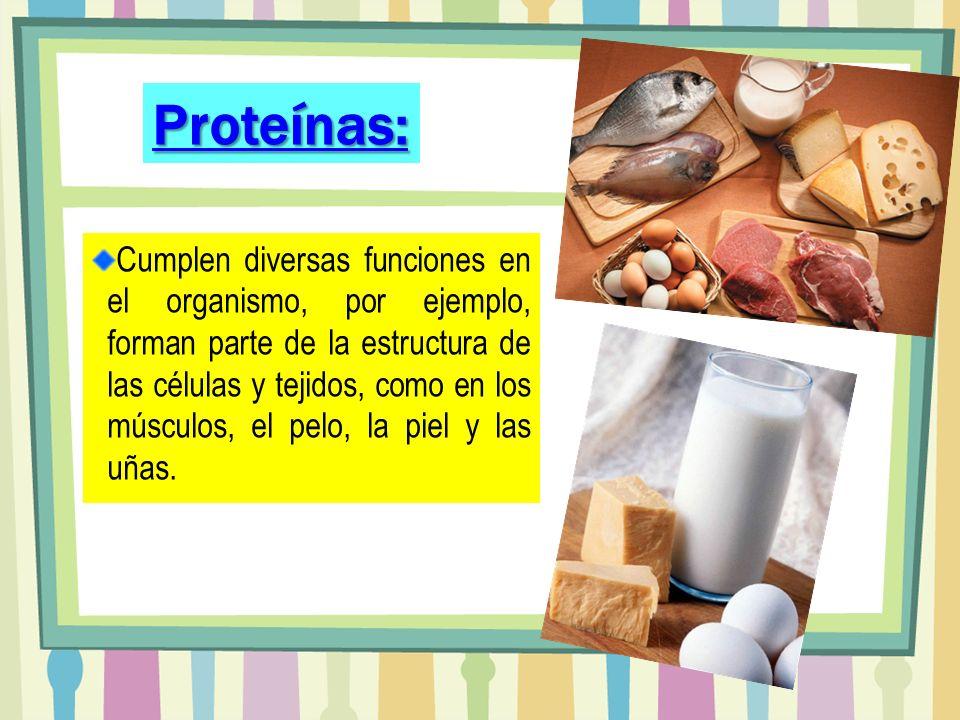 Cumplen diversas funciones en el organismo, por ejemplo, forman parte de la estructura de las células y tejidos, como en los músculos, el pelo, la pie