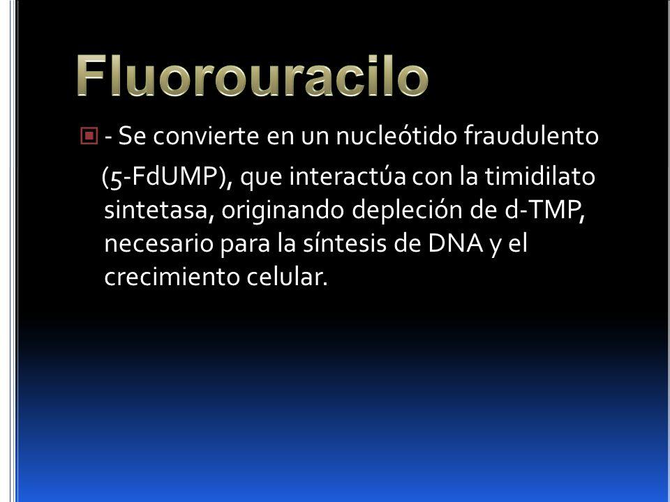 - Se convierte en un nucleótido fraudulento (5-FdUMP), que interactúa con la timidilato sintetasa, originando depleción de d-TMP, necesario para la sí