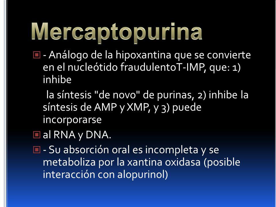 - Análogo de la hipoxantina que se convierte en el nucleótido fraudulentoT-IMP, que: 1) inhibe la síntesis