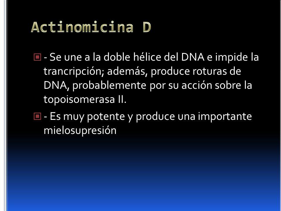 - Se une a la doble hélice del DNA e impide la trancripción; además, produce roturas de DNA, probablemente por su acción sobre la topoisomerasa II. -