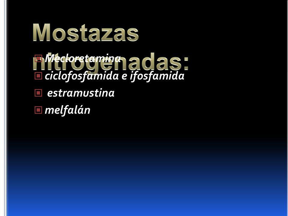 Mecloretamina ciclofosfamida e ifosfamida estramustina melfalán