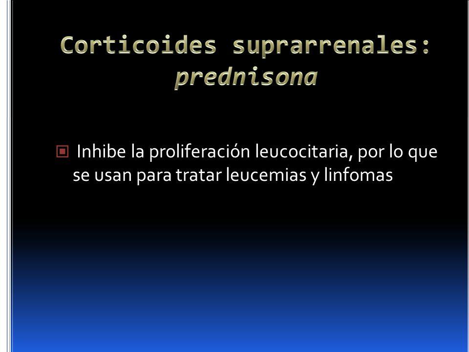 Inhibe la proliferación leucocitaria, por lo que se usan para tratar leucemias y linfomas