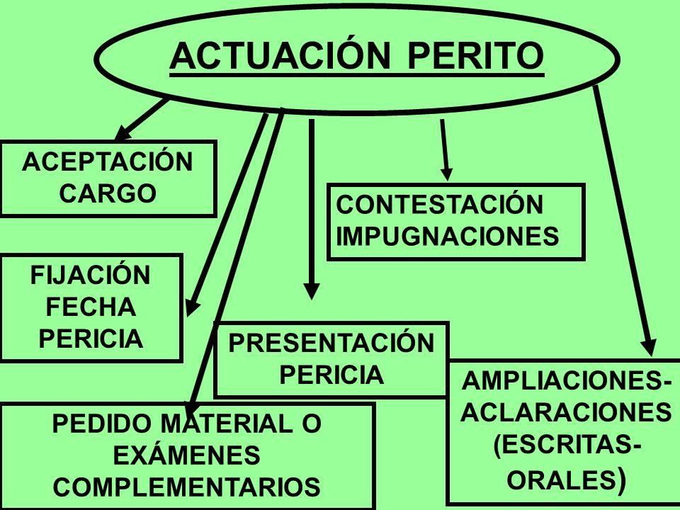 ACTUACIÓN PERITO ACEPTACIÓN CARGO FIJACIÓN FECHA PERICIA PEDIDO MATERIAL O EXÁMENES COMPLEMENTARIOS PRESENTACIÓN PERICIA AMPLIACIONES- ACLARACIONES (E