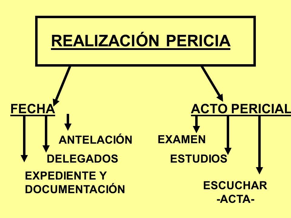 REALIZACIÓN PERICIA FECHA ANTELACIÓN DELEGADOS EXPEDIENTE Y DOCUMENTACIÓN ACTO PERICIAL EXAMEN ESTUDIOS ESCUCHAR -ACTA-