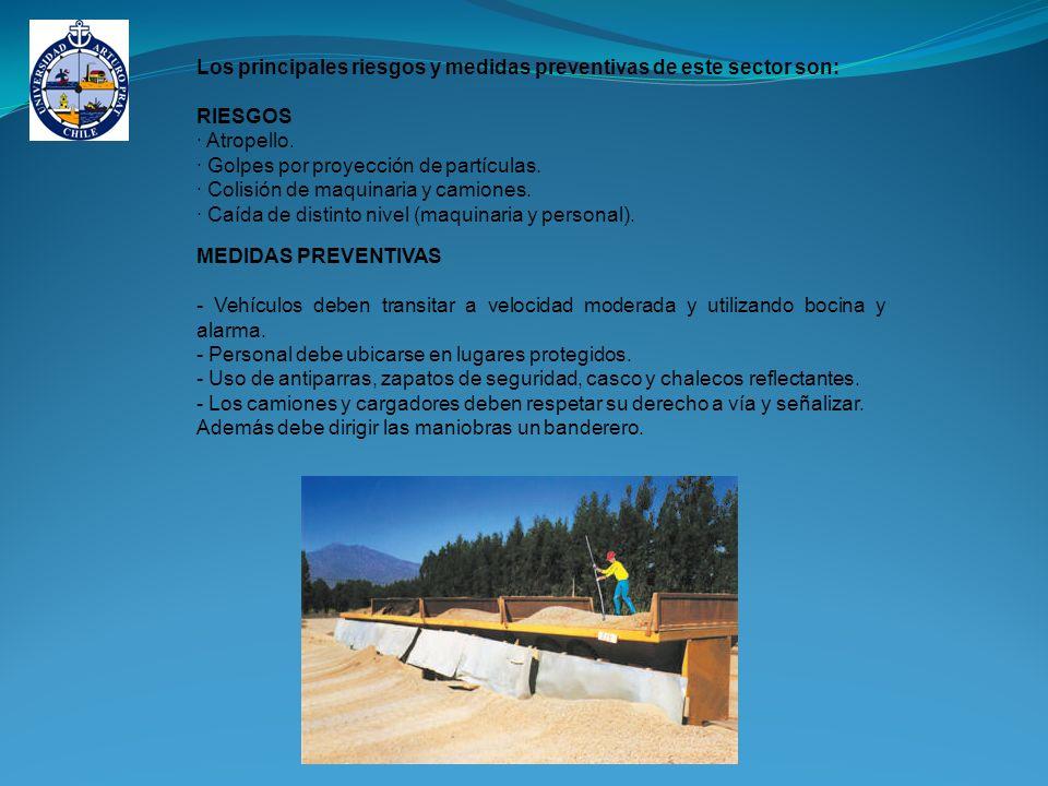 Los principales riesgos y medidas preventivas de este sector son: RIESGOS · Atropello.