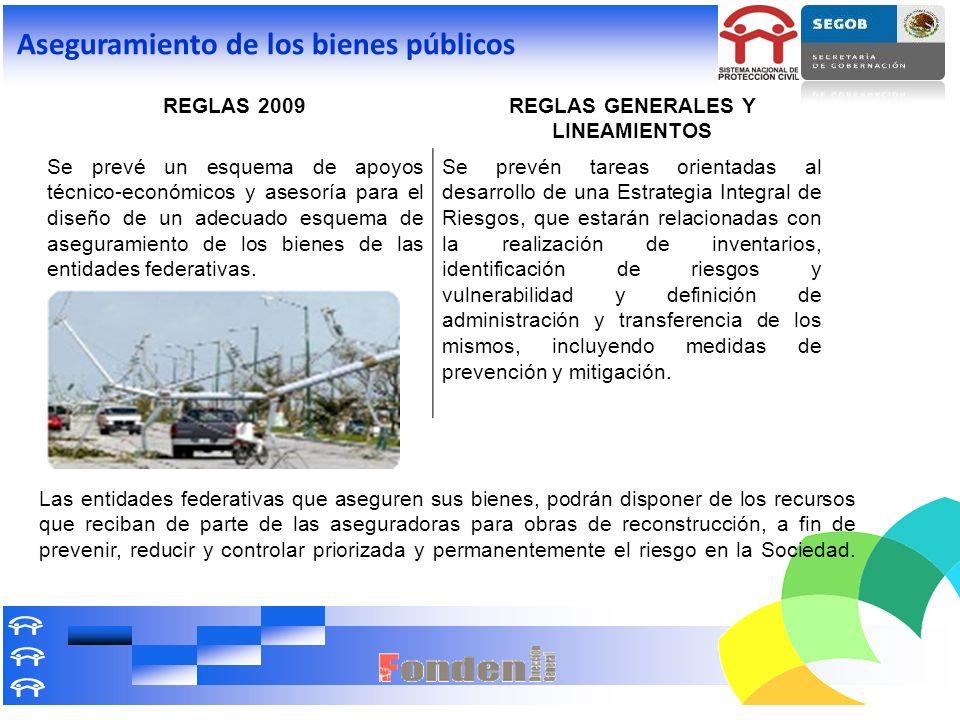 Aseguramiento de los bienes públicos REGLAS 2009REGLAS GENERALES Y LINEAMIENTOS Se prevé un esquema de apoyos técnico-económicos y asesoría para el di
