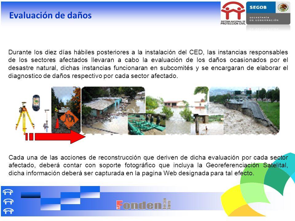 Evaluación de daños Durante los diez días hábiles posteriores a la instalación del CED, las instancias responsables de los sectores afectados llevaran