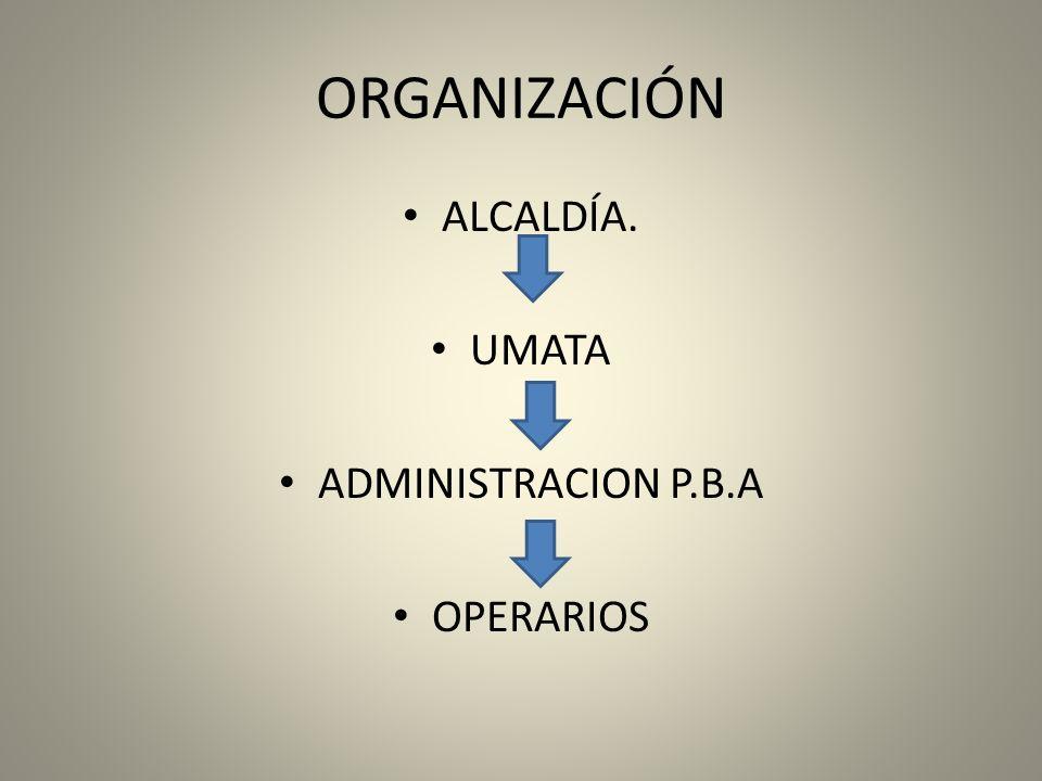 ORGANIZACIÓN ALCALDÍA. UMATA ADMINISTRACION P.B.A OPERARIOS