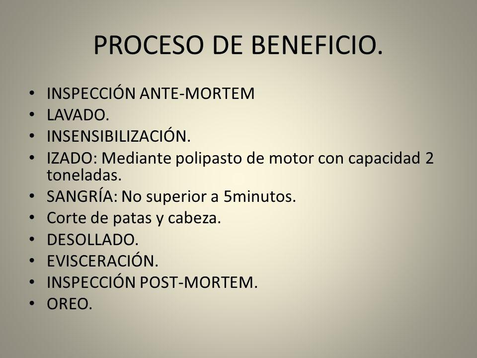 PROCESO DE BENEFICIO.INSPECCIÓN ANTE-MORTEM LAVADO.