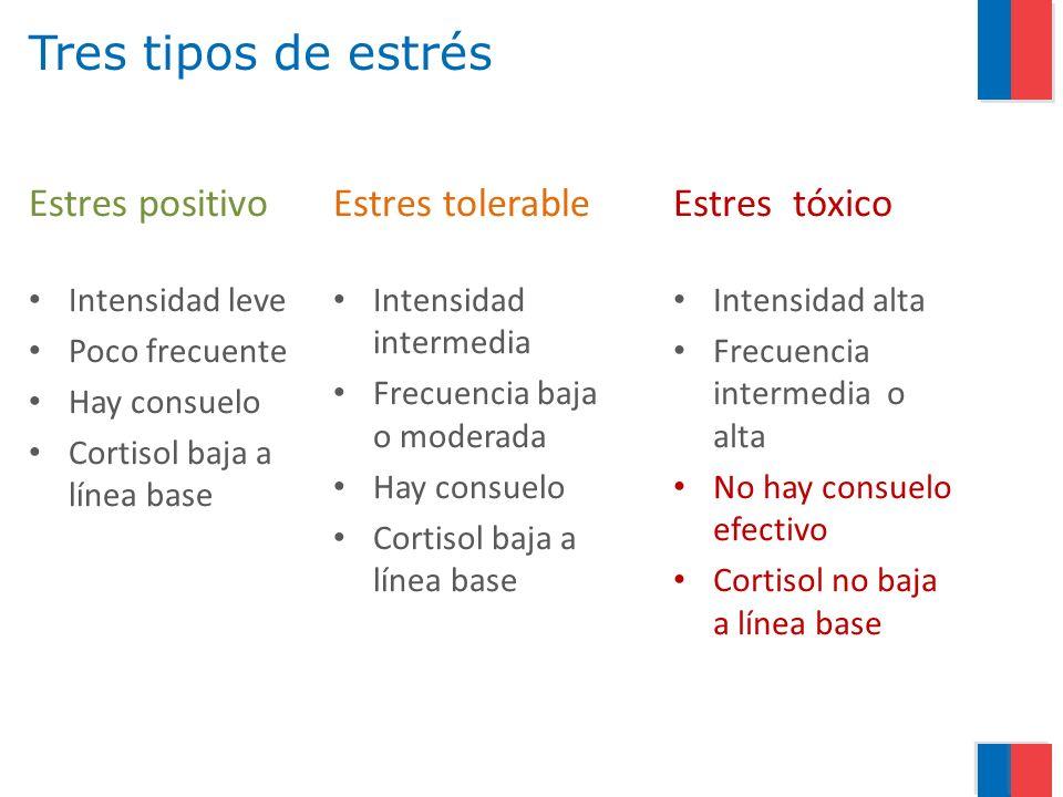 Tres tipos de estrés Estres positivo Intensidad leve Poco frecuente Hay consuelo Cortisol baja a línea base Estres tolerable Intensidad intermedia Fre