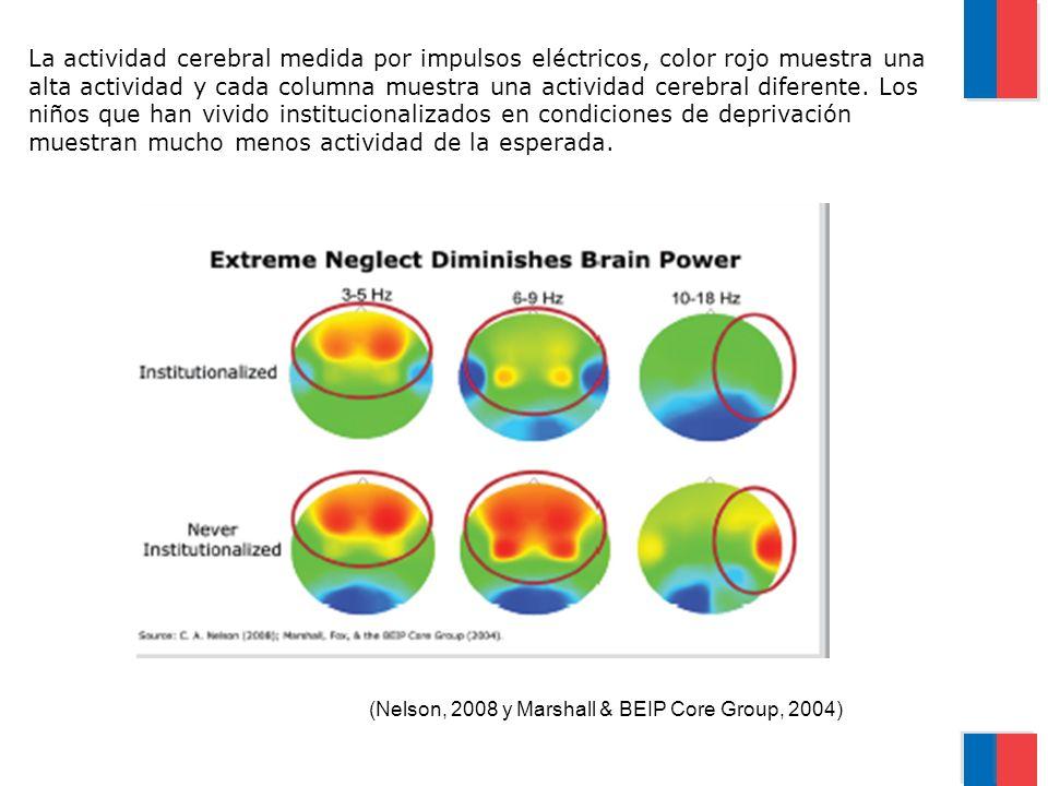 La actividad cerebral medida por impulsos eléctricos, color rojo muestra una alta actividad y cada columna muestra una actividad cerebral diferente. L
