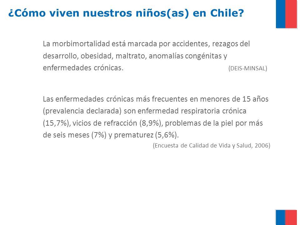 ¿Cómo viven nuestros niños(as) en Chile? La morbimortalidad está marcada por accidentes, rezagos del desarrollo, obesidad, maltrato, anomalías congéni