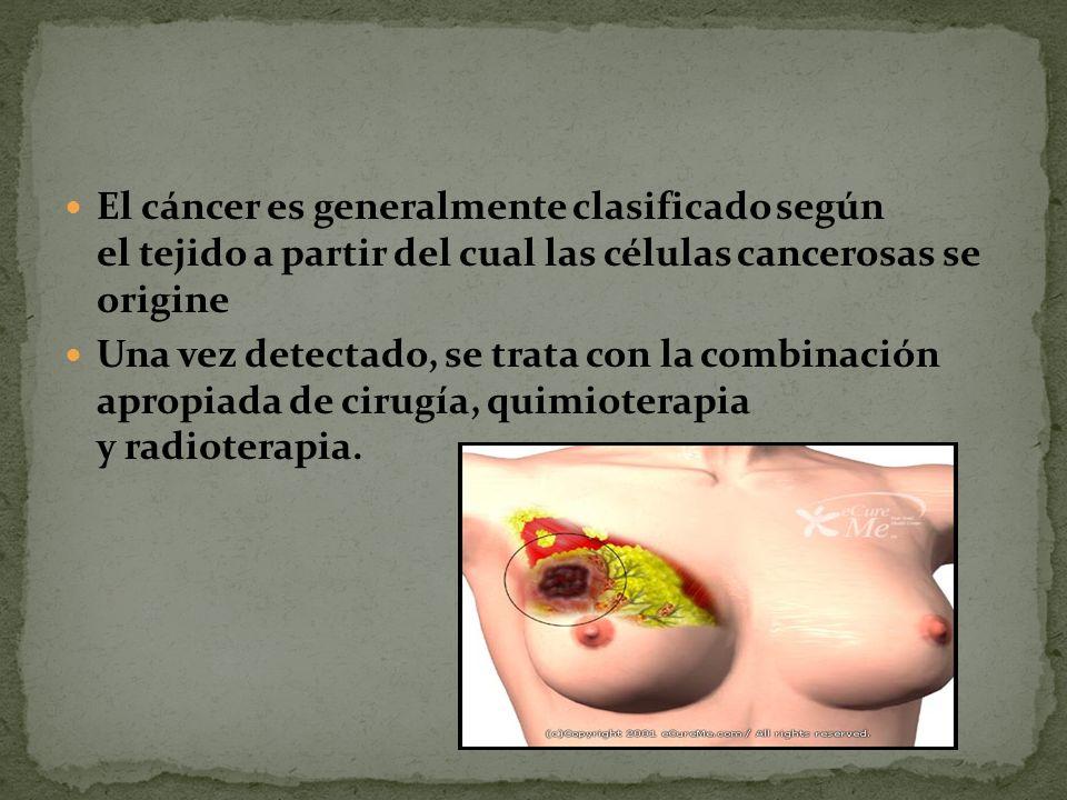 Todos los tumores, benignos y malignos, tienen dos componentes básicos en su estructura: 1 Las células neoplásicas proliferantes, es decir, las células que forman el tumor propiamente dicho, que constituyen el parénquima.