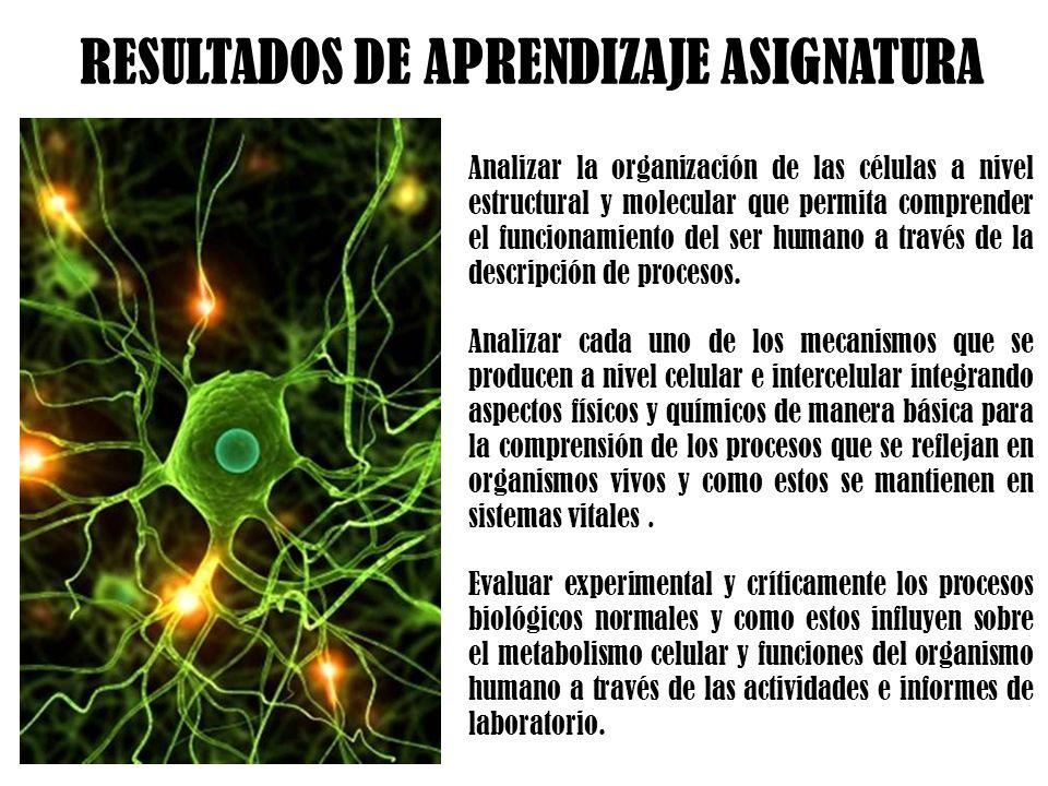 Analizar la organización de las células a nivel estructural y molecular que permita comprender el funcionamiento del ser humano a través de la descrip