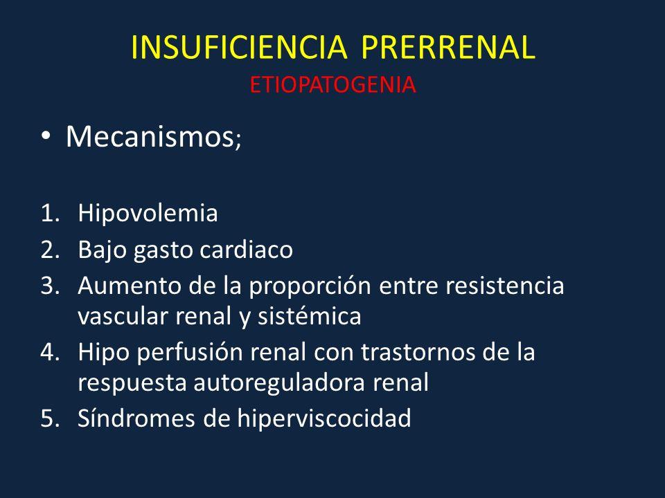 INSUFICIENCIA PRERRENAL ETIOPATOGENIA Mecanismos ; 1.Hipovolemia 2.Bajo gasto cardiaco 3.Aumento de la proporción entre resistencia vascular renal y s