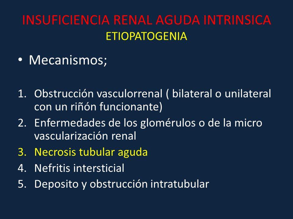 INSUFICIENCIA RENAL AGUDA INTRINSICA ETIOPATOGENIA Mecanismos; 1.Obstrucción vasculorrenal ( bilateral o unilateral con un riñón funcionante) 2.Enferm