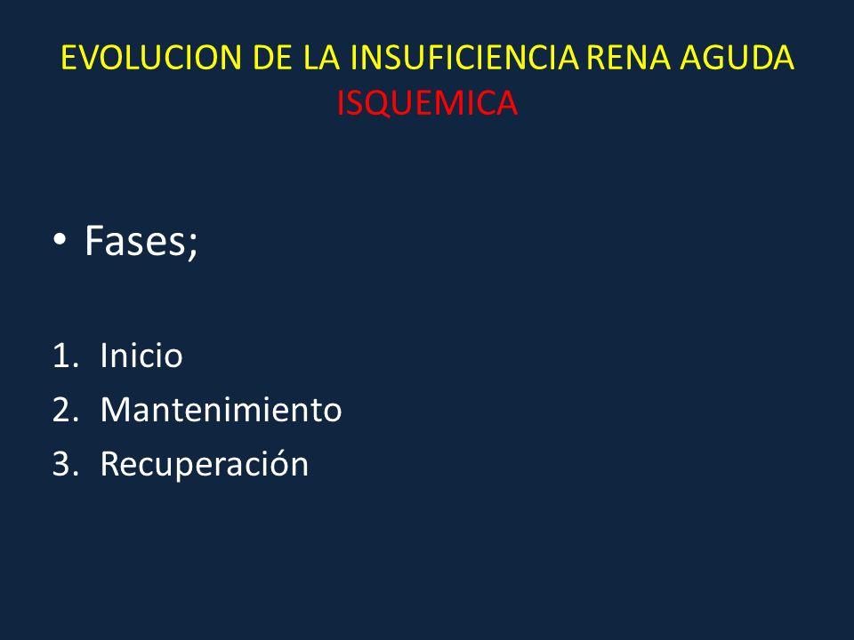 EVOLUCION DE LA INSUFICIENCIA RENA AGUDA ISQUEMICA Fases; 1.Inicio 2.Mantenimiento 3.Recuperación