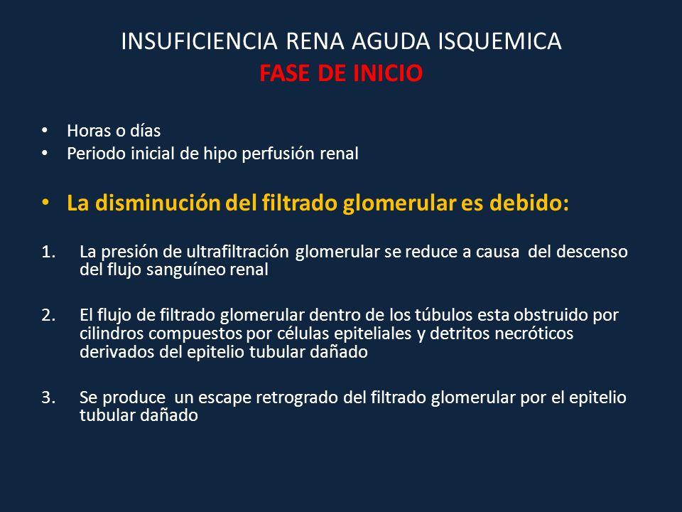 INSUFICIENCIA RENA AGUDA ISQUEMICA FASE DE INICIO Horas o días Periodo inicial de hipo perfusión renal La disminución del filtrado glomerular es debid