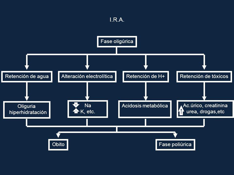 I.R.A. Fase oligúrica Retención de tóxicosRetención de aguaAlteración electrolíticaRetención de H+ Oliguria hiperhidratación Acidosis metabólica Obito