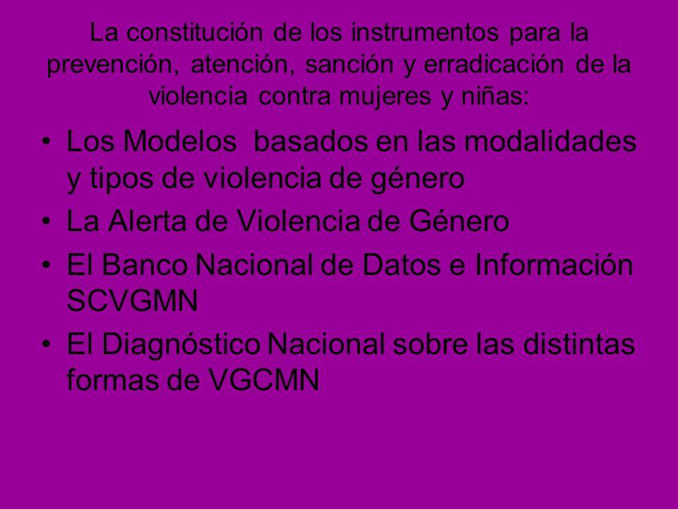 La constitución de los instrumentos para la prevención, atención, sanción y erradicación de la violencia contra mujeres y niñas: Los Modelos basados e