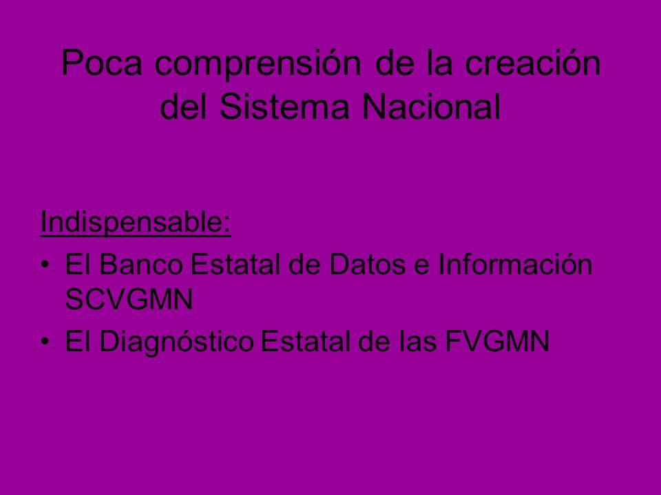 Poca comprensión de la creación del Sistema Nacional Indispensable: El Banco Estatal de Datos e Información SCVGMN El Diagnóstico Estatal de las FVGMN