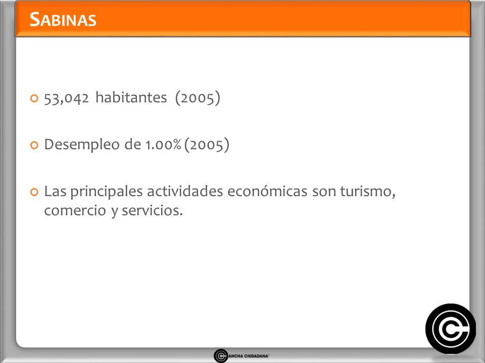 S ABINAS 53,042 habitantes (2005) Desempleo de 1.00% (2005) Las principales actividades económicas son turismo, comercio y servicios.