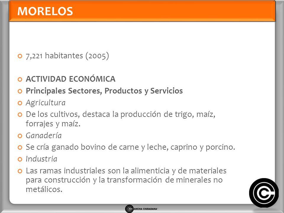 MORELOS 7,221 habitantes (2005) ACTIVIDAD ECONÓMICA Principales Sectores, Productos y Servicios Agricultura De los cultivos, destaca la producción de trigo, maíz, forrajes y maíz.