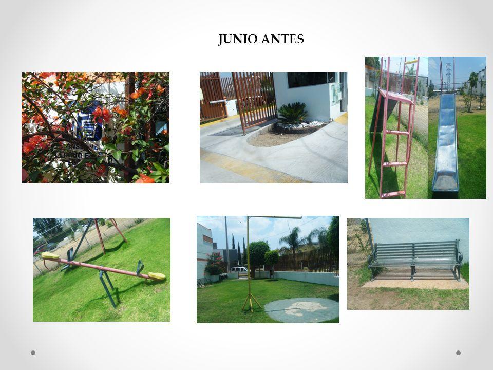 JUNIO ANTES