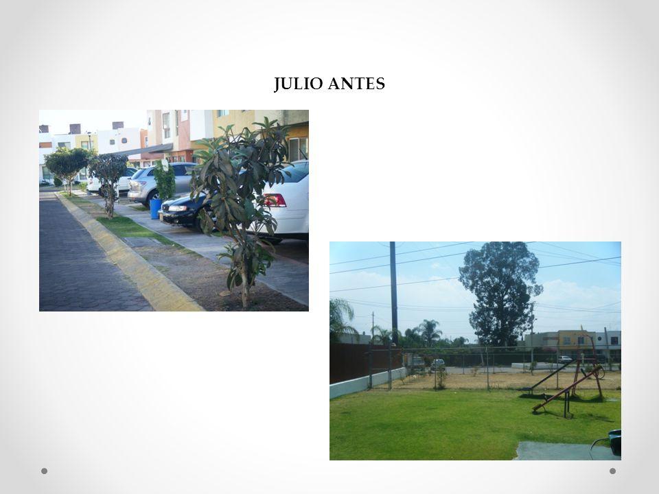 JULIO ANTES