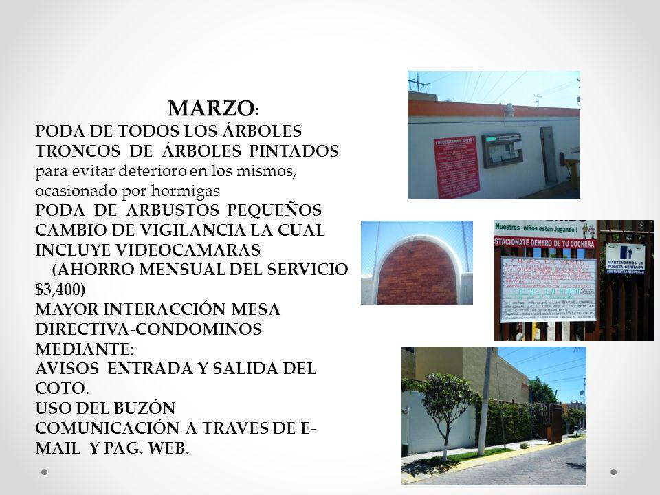 MARZO : PODA DE TODOS LOS ÁRBOLES TRONCOS DE ÁRBOLES PINTADOS para evitar deterioro en los mismos, ocasionado por hormigas PODA DE ARBUSTOS PEQUEÑOS CAMBIO DE VIGILANCIA LA CUAL INCLUYE VIDEOCAMARAS (AHORRO MENSUAL DEL SERVICIO $3,400) MAYOR INTERACCIÓN MESA DIRECTIVA-CONDOMINOS MEDIANTE: AVISOS ENTRADA Y SALIDA DEL COTO.
