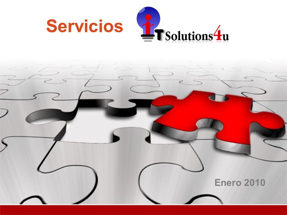 Servicios Enero 2010