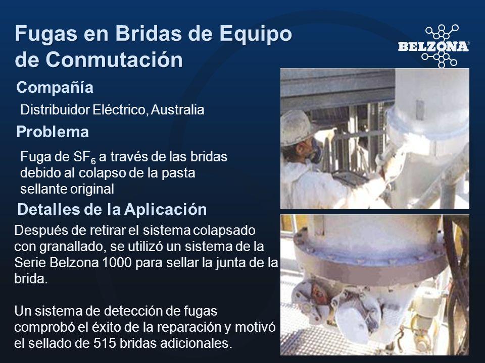 Compañía Problema Detalles de la Aplicación Fugas en Bridas de Equipo de Conmutación Distribuidor Eléctrico, Australia Fuga de SF 6 a través de las br