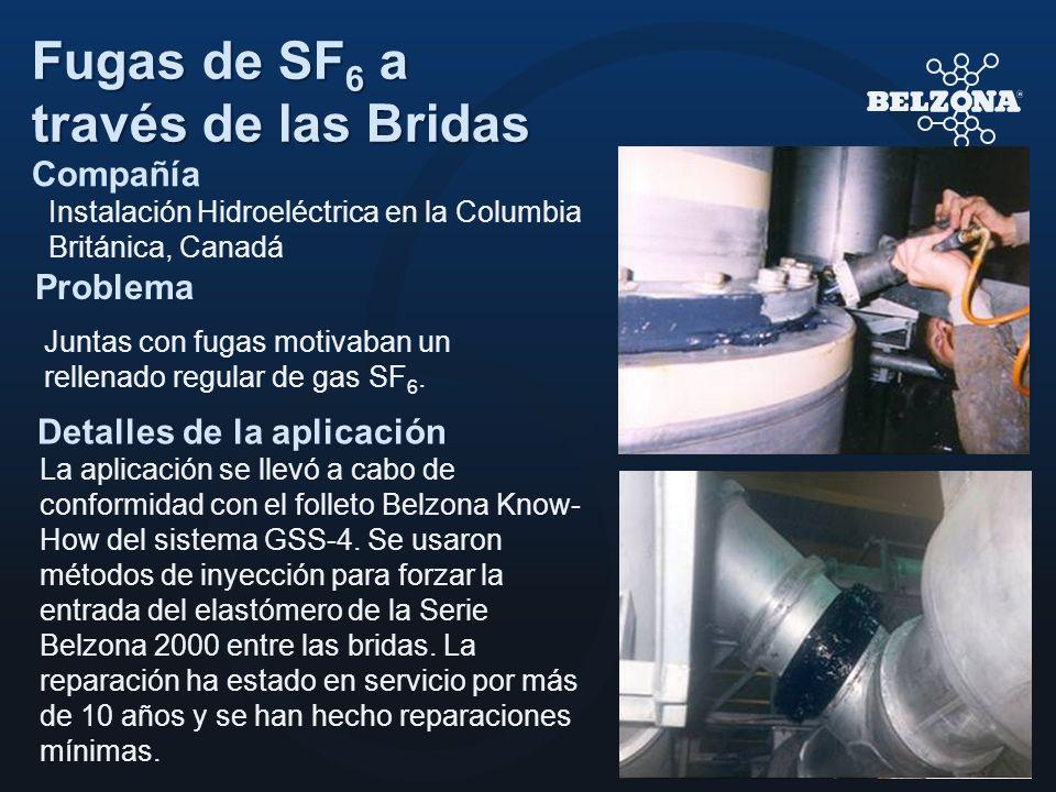 Compañía Problema Detalles de la aplicación Fugas de SF 6 a través de las Bridas Instalación Hidroeléctrica en la Columbia Británica, Canadá Juntas co
