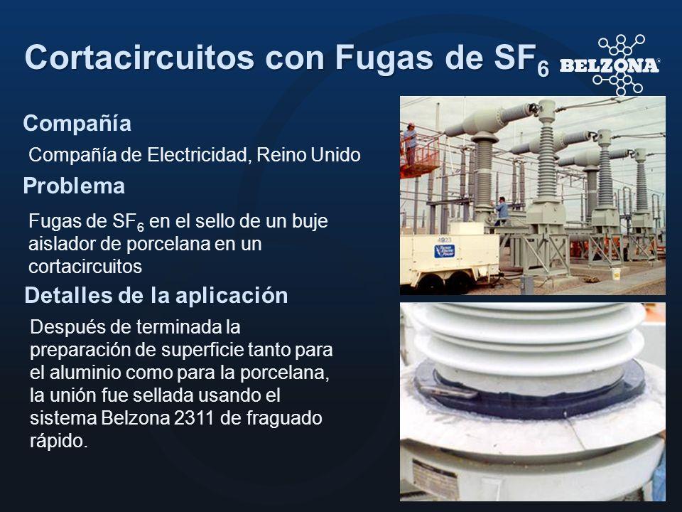 Compañía Problema Detalles de la aplicación Cortacircuitos con Fugas de SF 6 Compañía de Electricidad, Reino Unido Fugas de SF 6 en el sello de un buj
