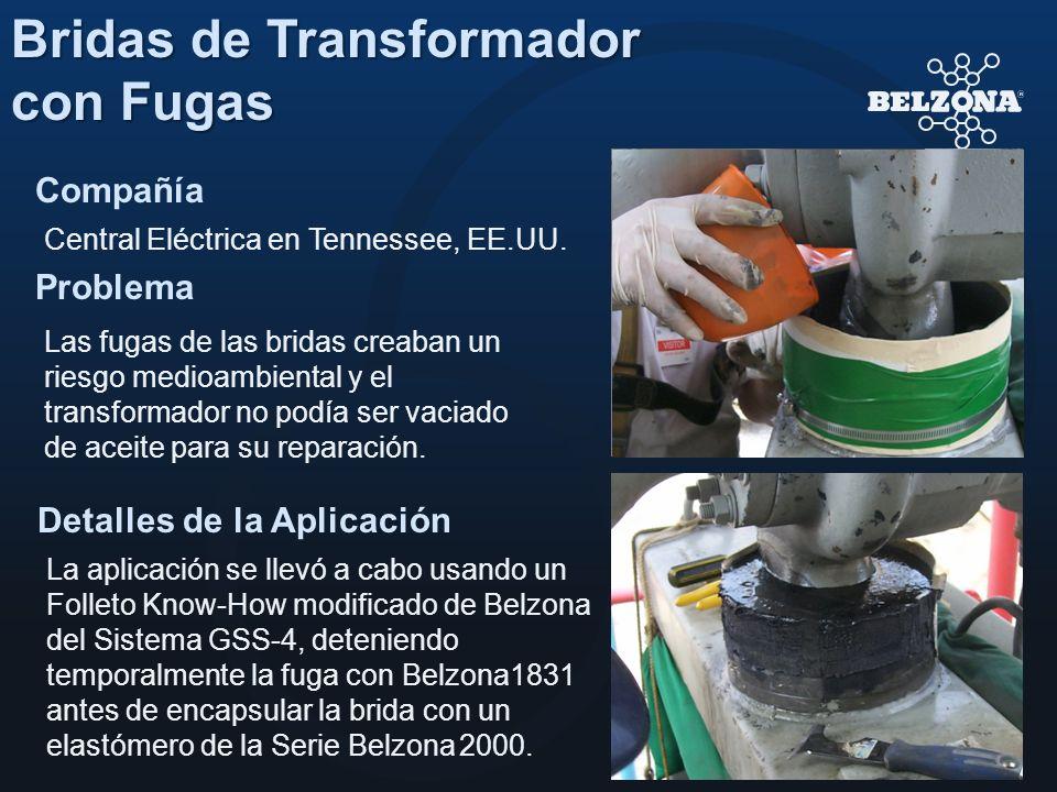 Compañía Problema Detalles de la Aplicación Bridas de Transformador con Fugas Central Eléctrica en Tennessee, EE.UU. Las fugas de las bridas creaban u
