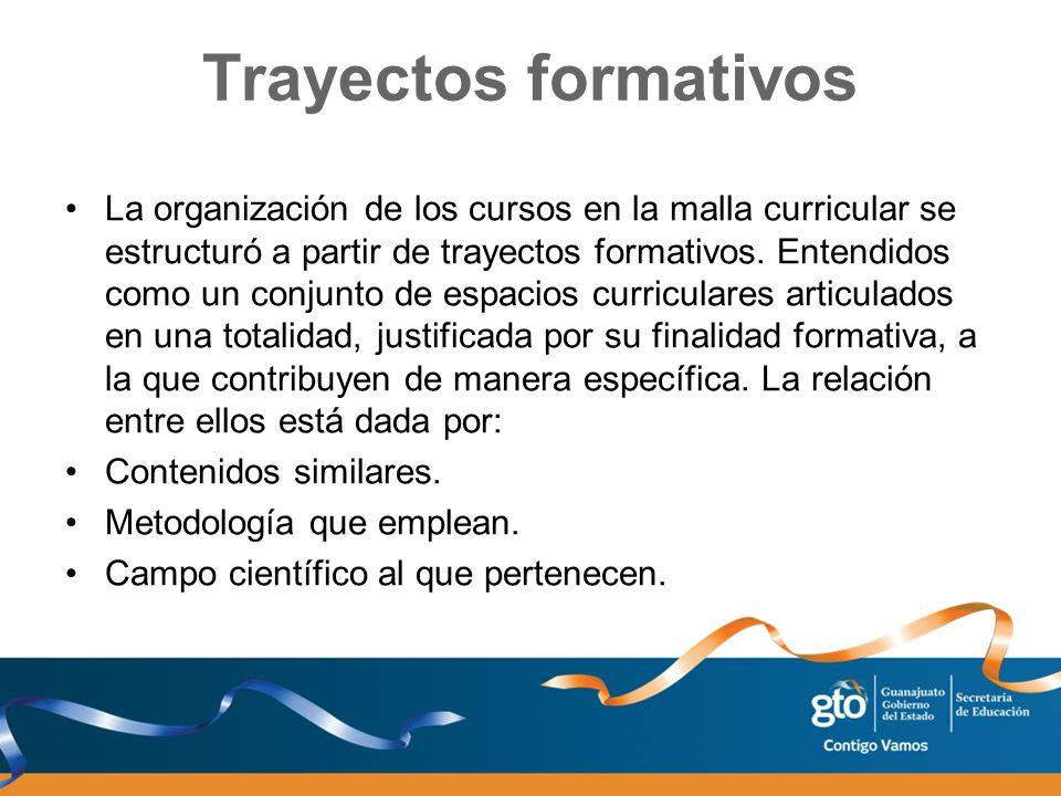 Trayectos formativos La organización de los cursos en la malla curricular se estructuró a partir de trayectos formativos. Entendidos como un conjunto