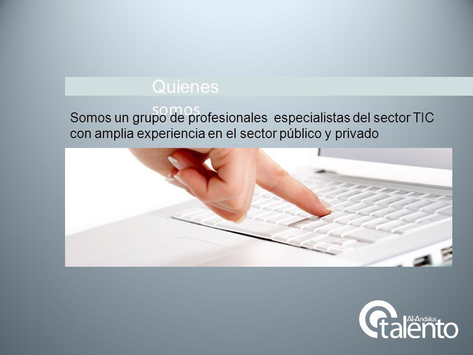 Quienes somos Somos un grupo de profesionales especialistas del sector TIC con amplia experiencia en el sector público y privado